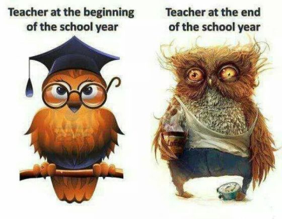 teacher beginning of the year